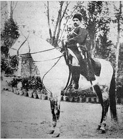 شاه قاجار